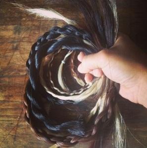 Braids of horse hair